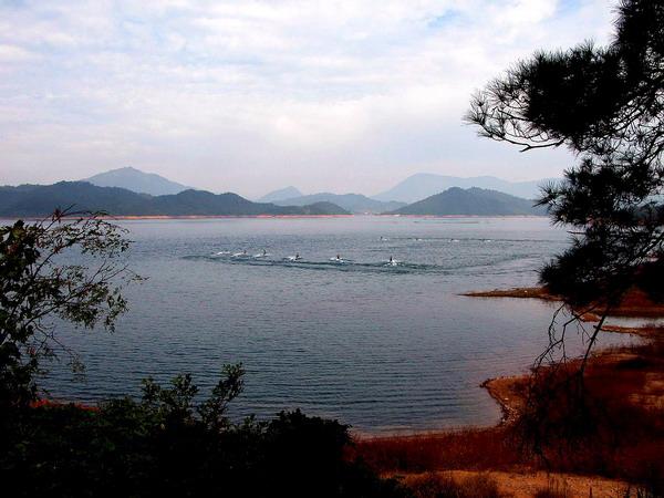 太平湖风景区地处黄山市黄山区西北部,介于黄山,九华山之间,是安徽