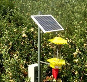代理核新电力太阳能发电资金最低要多少