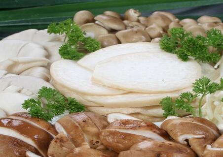 中盛永基食用菌加盟费多少?一共需要投资多少钱