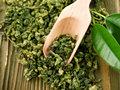 什么決定了茶葉的味道?哪些因素決定了茶的口感