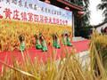 2016黄庄新米节吸引八方游客