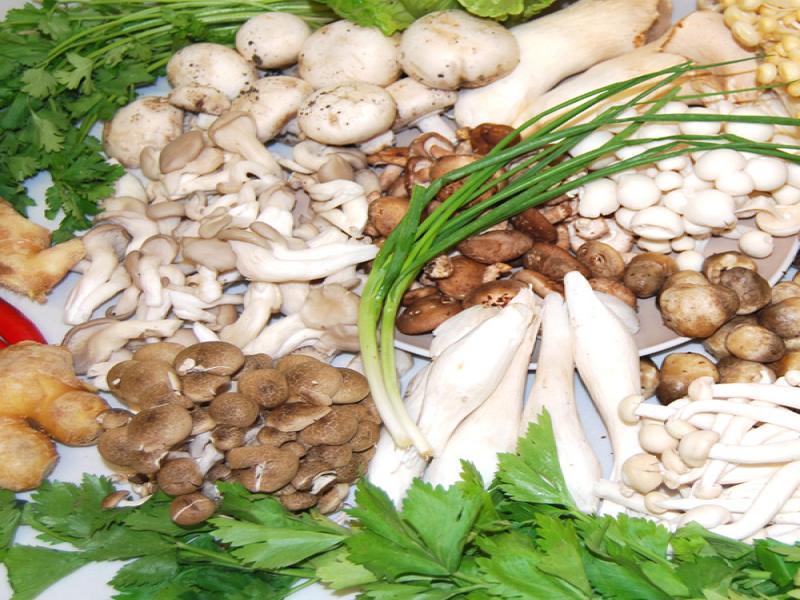 中盛永基食用菌是如何加盟的,中盛永基食用菌加盟投资成本利润有多少