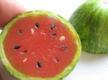 世界上最小的西瓜 价值多少钱一斤
