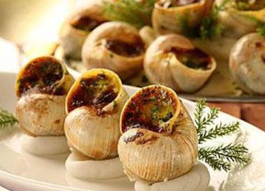食用蜗牛的价格贵吗?可食用的蜗牛品种有哪些?