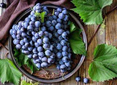 2017葡萄多少钱一斤?葡萄怎么选购?