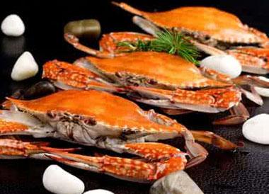 飞蟹多少钱一斤?2017飞蟹价格