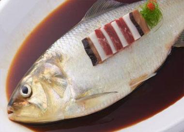 鲥鱼还有吗?长江鲥鱼灭绝了吗?
