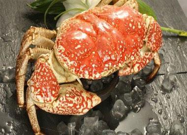 皇帝蟹和帝王蟹哪个贵?皇帝蟹和帝王蟹的区别