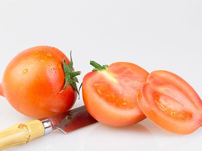西红柿产地在哪里?