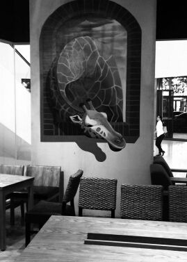 一家动物园主题咖啡馆zoo