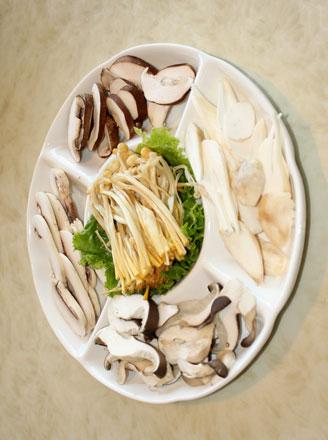 鲍鱼菇怎么做好吃?