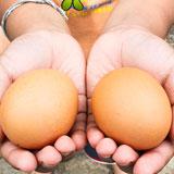 香椿蒸鸡蛋的做法是什么?有什么功效