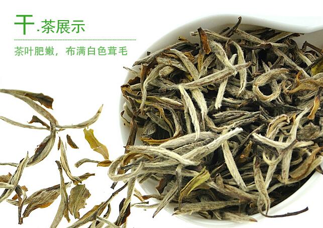 白茶的产地