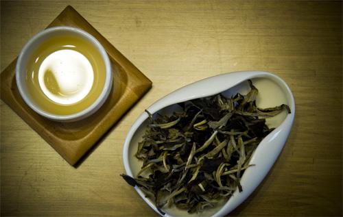 生普洱茶的泡法 掌握技巧很关键