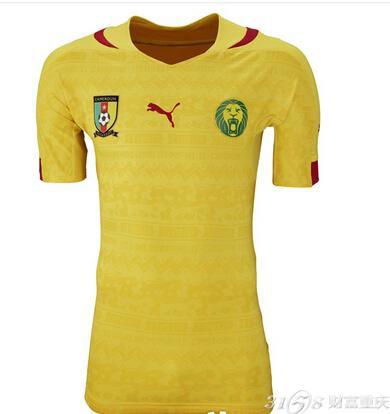 喀麦隆足球队名单_喀麦隆国家队全家福图片