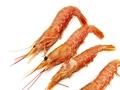 2018罗氏虾多少钱一斤?罗氏虾做法有哪些?