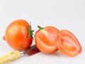 番茄燉排骨怎么做好吃?做法步驟是什么?