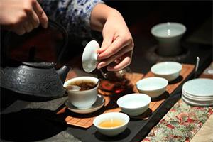 喝茶是一门艺术 评茶是一门技术
