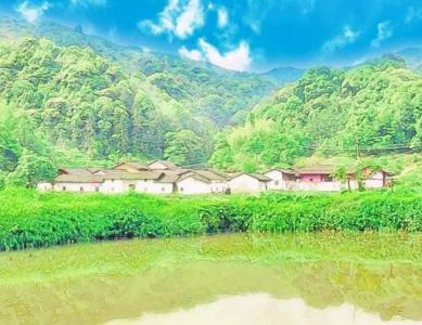 广州深山里,居然有一个像日本漫画的古村落!