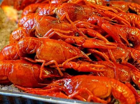 虾贝勒小龙虾