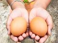 端午節吃雞蛋的含義有哪些?