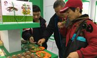 修文猕猴桃等贵州特产惊艳绿博会