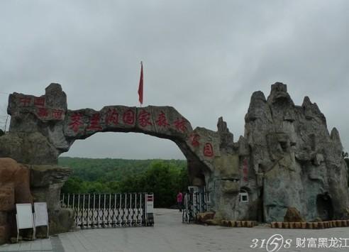 黑龙江旅游景点推荐 茅兰沟国家森林公园