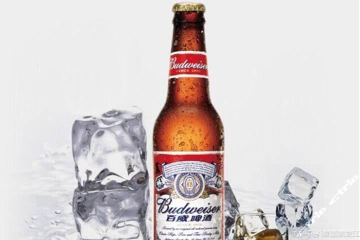 百威啤酒代理利润高不高