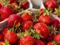 草莓幾月份成熟上市 什么時候是吃草莓的最佳時間