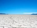 盐碱地开发利用:不止于改良