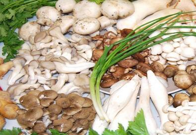 中盛永基食用菌加盟需要多少启动资金?市场销量好吗