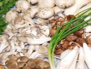 中盛永基食用菌如何加盟代理?需要投资多少钱