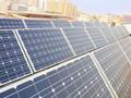 加盟中首光伏太阳能发电会赚钱吗?