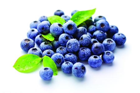 蓝莓的营养价值高,因此