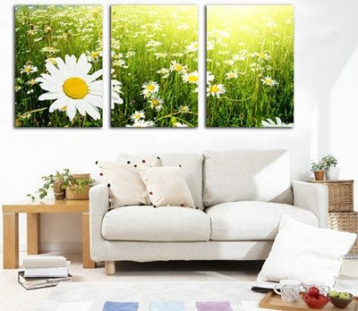 暖色调和冷色调,白色为主的房间选择装饰画没有太多