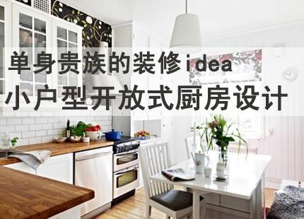 2014最新小户型开放式厨房装修案例
