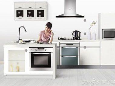 2014厨房电器十大品牌排行榜