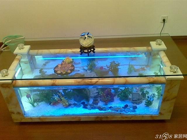 怎样代理森森鱼缸?需要什么条件?