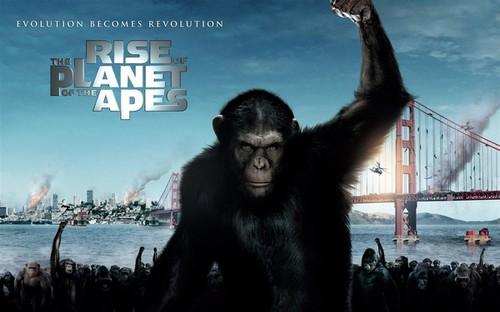 猩球崛起2什么时候上映 猩球崛起黎明之战票价