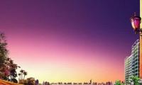 南京出台住房租赁新政 将试点商业用房改建为租赁住房