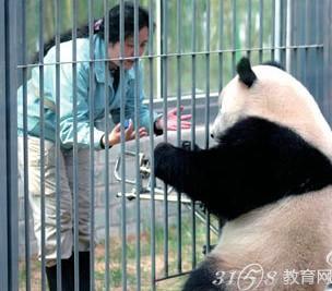 动物园招聘惊呆小伙伴