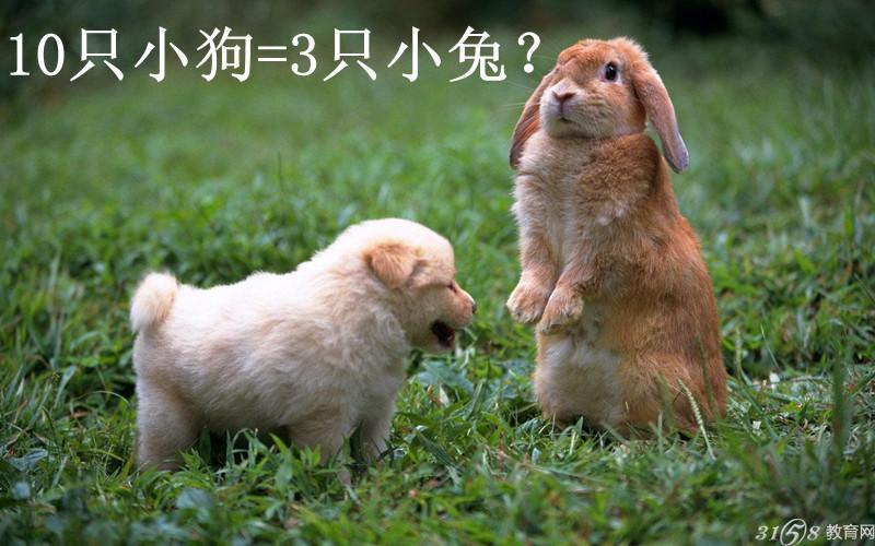 如果10只小狗和3只兔子一样重,3只小鸭子和1只小兔子一样重,那么1只小狗和几只小鸭子一样重?这样的奇葩数学题你会答吗?现在的家长中不乏有高学历的,但在辅导读小学孩子做作业时,仍会被小学低年级奇葩数学题难住。10只小狗怎么会跟3只小兔一样重呢? 10只小狗和3只小兔一样重,这兔子好重啊1只狗等于0.