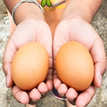 端午节为什么要吃咸鸭蛋?吃咸鸭蛋有什么说法?
