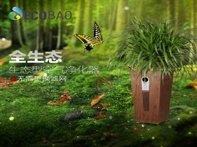 生泰宝植物空气净化器加盟热线是多少?