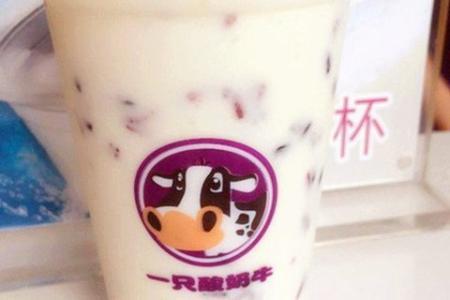 一只酸奶牛哪种好喝?一只酸奶牛利润怎么样?