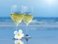 葡萄酒每天喝多少毫升?