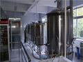 如何选购酿酒设备?