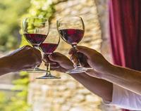 影响葡萄酒风味的这几大酿酒工艺你知道吗