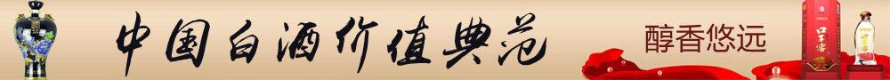中国白酒 价值典范