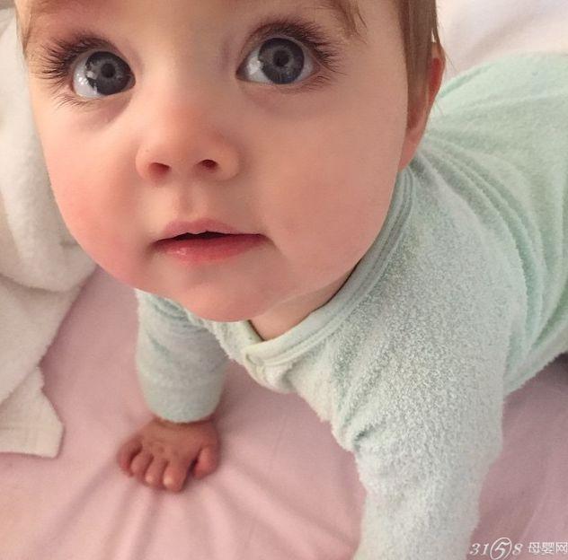 超萌澳洲大眼宝宝引十万人点赞 3158母婴网